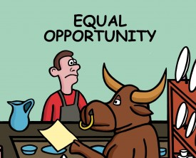 Expecting equal opportunity and treatment, a bull walks into a place of business with a job application. The owner better not discriminate!