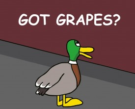 Got Grapes? Every day a duck walks into a bar and asks the same question. The bartender, after several days, loses his patience with the duck.